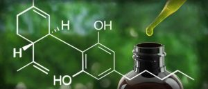 what is cbd, what is cannabidiol, cbd health benefits